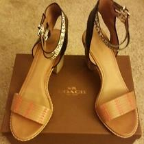 Coach Bnwb Pexton Womens Ginger/black Leather Open Toe Sandals Size 10 B Photo