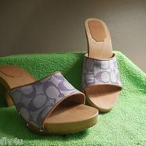 Coach Brenda Signature C Purple Wood Heeled Slide Sandals Size 9 Photo