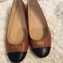 Coach Brown/black Dress Flats Photo