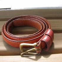 Coach Brown Leather Womens Cow Hide Solid Brass Buckle Belt Sz 28 Photo