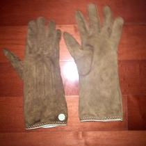 Coach Brown Suede Cashmere Lined Gloves 6.5 Photo