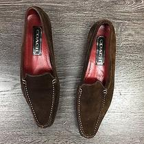 Coach Brown Suede Womens Loafers Photo