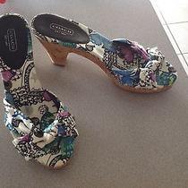 Coach Butterfly Sandals Size 9 1/2b  Euc  Photo