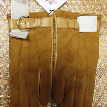 Coach Cashmere Lined Gloves Women Suede Leather Campbell Buckle F83720 / Camel Photo