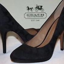 Coach Caya Black Heels  Photo