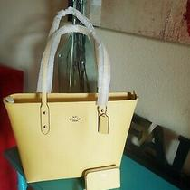 Coach City Zip Tote & Card Case New With Tags Beautiful Daisy Yellow   Photo