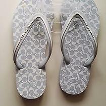 Coach Classic Baby Blue Sandal Flip Flops Size 5.5  Photo