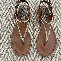 Coach Coco Python Print Strappy Sandals Size 5.5 Photo