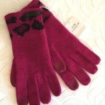Coach Cranberry Ocelot Touch Gloves Pink Leopard Msrp 80 Photo