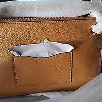 Coach Crossbody Bag Saddle Color in Leather. Beautiful Photo
