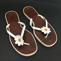 Coach Daisy Lucia Leather Sandals Flip-Flops Thongs Size 9 Photo