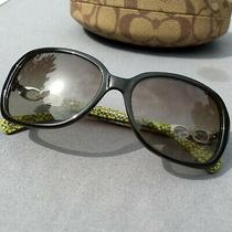 Coach Dark Olive Hc8019 (L007 Beatrice) 5036/8e 58-16-135 Sunglasses Photo