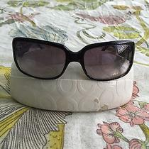 Coach (Delphine) Black Sunglasses (Original) Photo