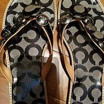 Coach Dyan Sandals Size 6.5 Adorable. Get Ready for Summer Photo