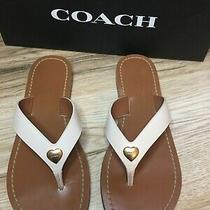 Coach Ellis Leather Sandals With  New W/ Box Photo