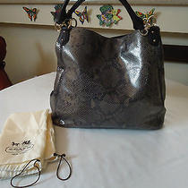Coach Exotic Print Large Hobo Graphite F 33443  Nwt Photo