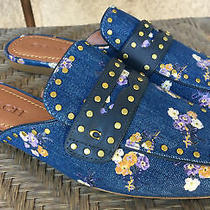 Coach Faye Slides Denim Painted Floral Size 7.5 New Without Box Photo