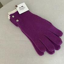 Coach Fine Knitted Gloves With Silver Buttons -Amethyst- Nwt (Mfsrp 48) Photo