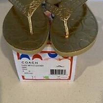 Coach Flip Flop Sandals Cadee Gold Size 8 Photo