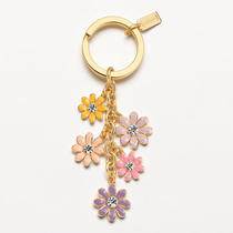 Coach Floral Multi Mix Key Ring Style F93117 B4/multicolor Photo