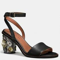 Coach G1788 Mid Heel Leather Ankle Strap Sandal With Tea Rose Size 9 in Black Photo
