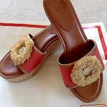 Coach Geranium Jazmin Canvas & Cork Wedge Sandal Size 5.5   F2370/a11  Excellent Photo