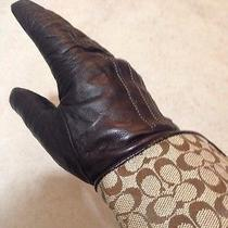 Coach Glove 7 1/2 Brown Leather Cashmere Lined Signature Cuff Right Glove Only Photo
