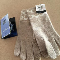 Coach  Gloves  Brand New With Tag  Gift Receipt  1 Sample Angel Perfume Photo