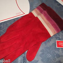Coach Gloves Red Suede  Beautiful Photo