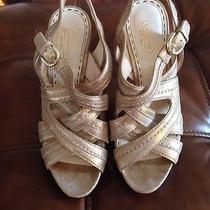 Coach Gold Sandals  Photo