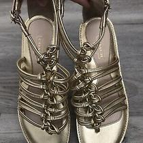 Coach Gold Strappy Gladiator Sandals Size 5 Photo