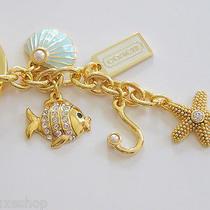 Coach Gold Under the Sea Beach Ocean Starfish Keyring Key Chain Fob Photo