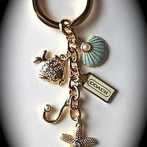 Coach Goldtone Ocean Starfish Seashell Fish Key Fob Chain Photo