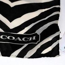 Coach Graphic Zebra Ombre Black Large Scarf Wrap Shawl Photo