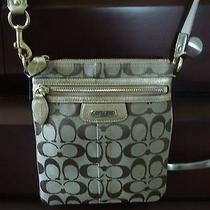 Coach Handbag Photo