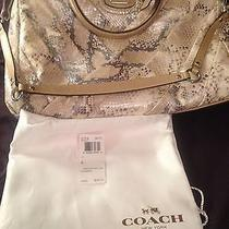 Coach Handbag - Authentic  New Condition - Genuine Snake Skin Gorgeous Photo