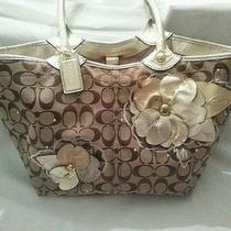 Coach Handbag Beautiful  Photo