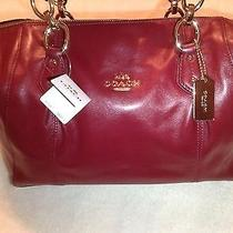Coach Handbag Leather Satchel New With Tags Photo