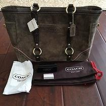 Coach Handbag Suede Never Been Used Photo