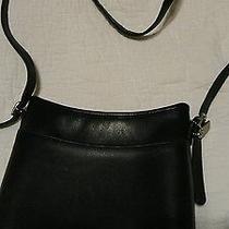 Coach Handbags Photo