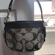 Coach Handbags Photo