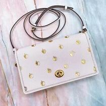 Coach Hayden Foldover Crossbody Clutch With Apple Print   Nwt Photo
