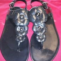 Coach Haylee Black Jelly Floral Flower Strap Slingbacks Sandals Size 7b Rubber Photo