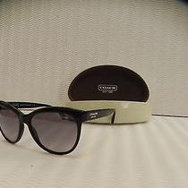 Coach Hc 8055 002/11 Black Sunglasses Photo