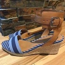 Coach Helen Wedge Sandals Blue Strip Leather Ankle Strap W/buckle Size 8.5 Cute Photo