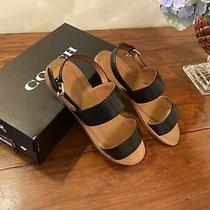 Coach Henny Leather Sandal Black Women Size 10 B New in Box 182.99 Org Price Photo