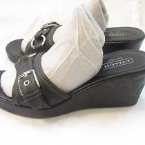 Coach Jewel Black Signature Buckle Wedge Slide Slip on Sandal - 8 B Photo