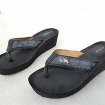 Coach Jolene Black Wedge Thong Sandals Women's Size 7b Photo