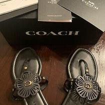 Coach Julia Black Leather Sandal 7b Photo