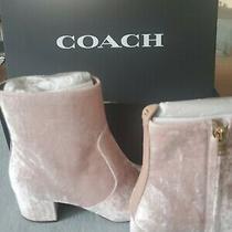Coach Juliet Booties Size 8 Color Blush Woman Beautiful Brand New  Photo